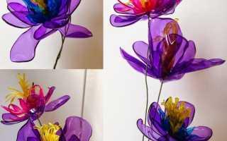 Инструкция по изготовлению цветов из пластиковых бутылок