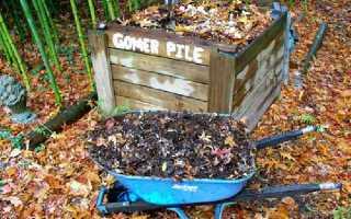 Производство компоста из листьев деревьев и секреты быстрого перегнивания