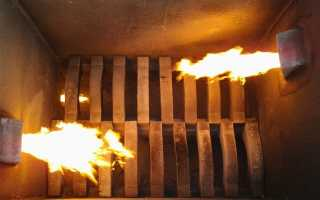 Применение крематоров для утилизации животных и запрет на захоронение