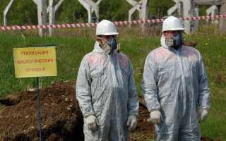 Опасность, классификация, правила обращения и способы утилизации биологических отходов