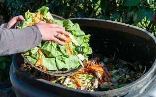 О пищевых отходах, правилах сбора и утилизации в ДОУ, ЛПУ, общепите и быту