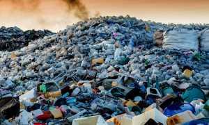 Экологическая проблема мусора в России и мире, мусорная реформа