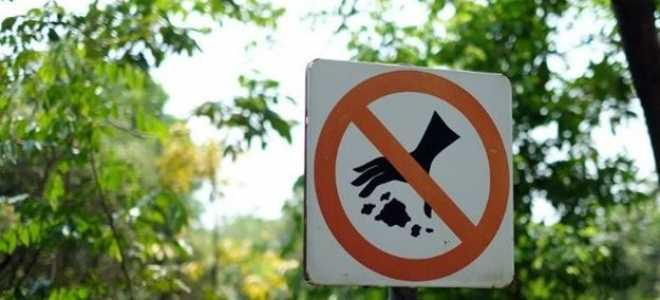 Штрафы за выброс мусора в неположенных местах