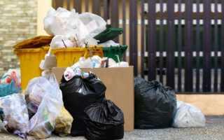 Цель, тарифы, раздельный сбор мусора и проблемы мусорной реформы 2019