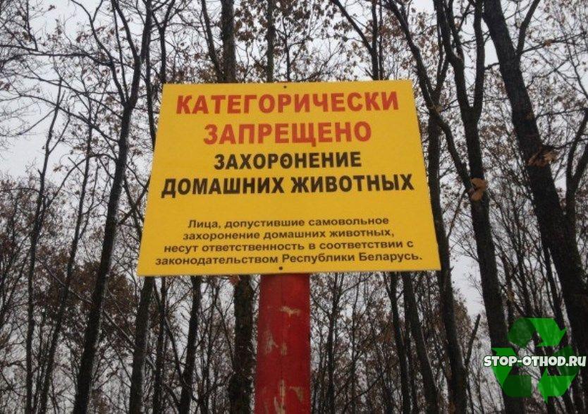 Захоронение животных запрещено