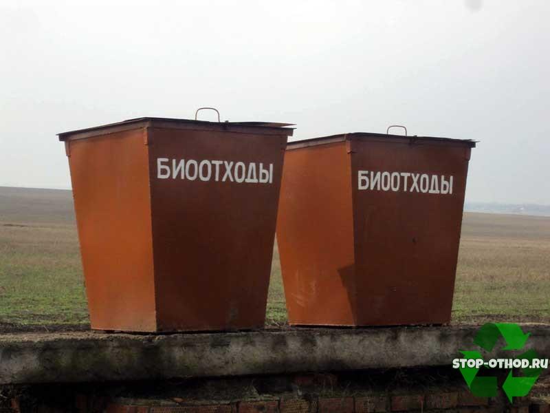 Классификация биологических отходов