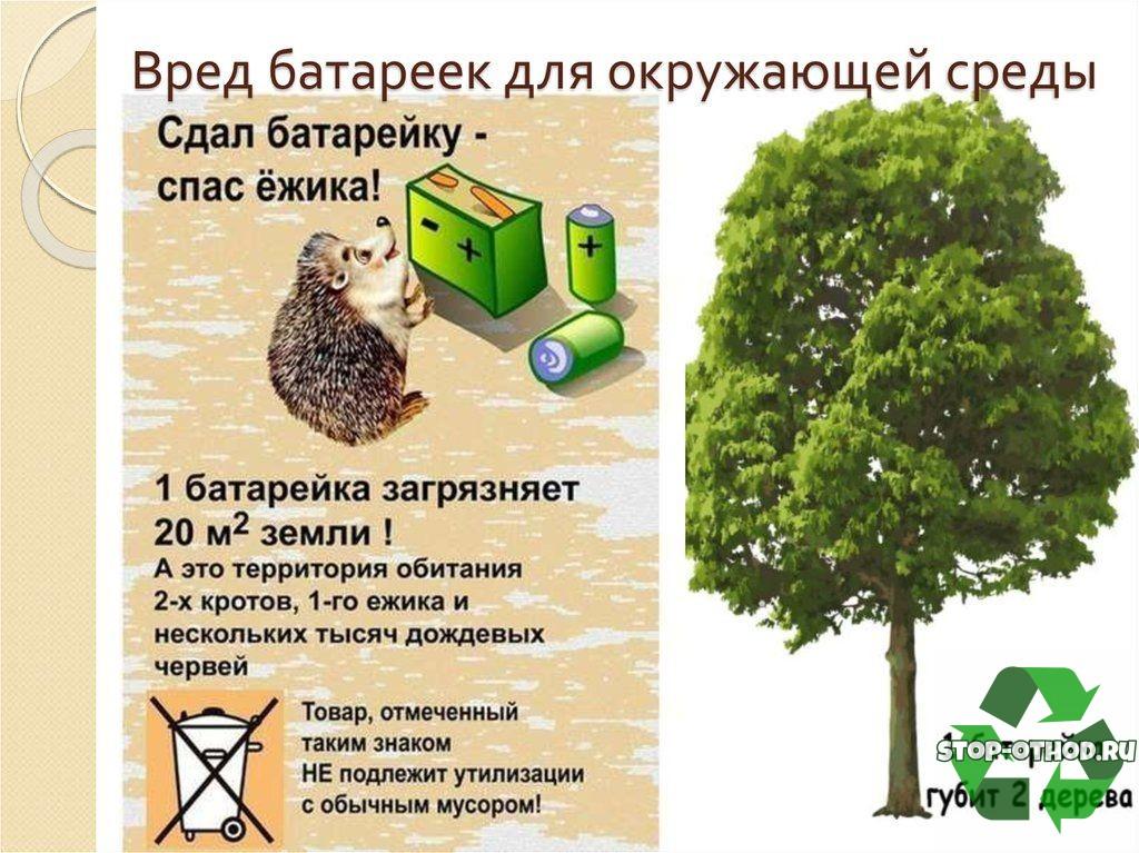Вред мусора для окружающей среды
